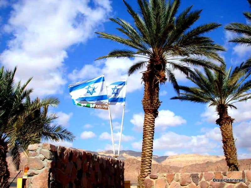 Flags & Palms Timna Valley Park