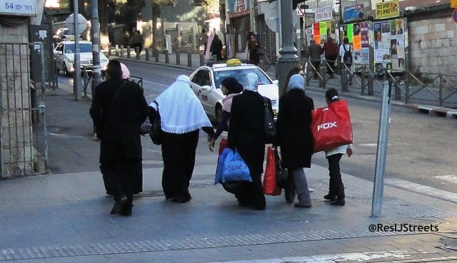 image Fox shopping bags