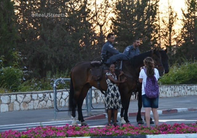 two horses with police riders,