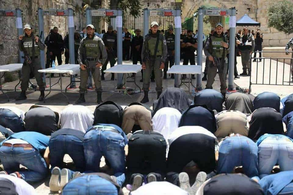 Jew Detector: What Waqf, Palestinian & Muslim Reactions To Temple Mount