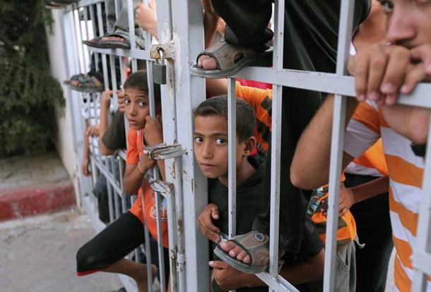 cage Gaza