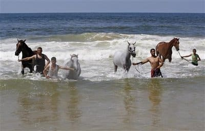 Palestinians in Gaza with horses - AP