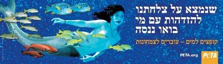 peta mermaid hebrew