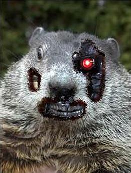 robot groundhog
