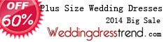Plus size wedding dresses at Weddingdresstrend.com