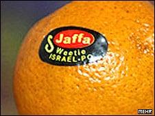 zionist-orange
